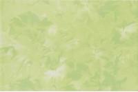 Нарцисс салатовый