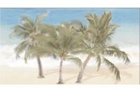 Ceradim Dec Tropic 3