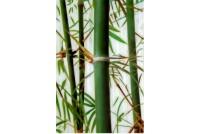 Бамбук GC 304503-01-3 Декор стекло