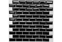 PR2348-41 NS mosaic