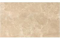 Saloni brown wall 01