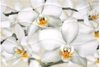 Энигма 3 тип 1 крупный цветок