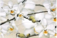 Энигма 3 тип 2 мелкий цветок