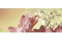 Сиерра 3С тип 2 панно Цветы