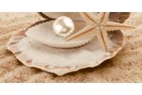 Аликанте декоративный массив Жемчужина (низ)