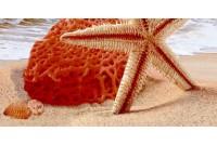 Дали декор песочный В тип 2 07-00-5-08-10-23-252