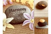Гармония NEFRIT