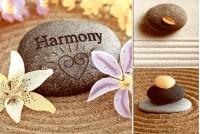 Гармония декоративный массив 06-01-11-732