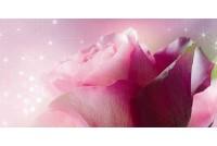 Ланком розовый декор 10-05-41-619-1