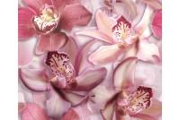 Porto Flowers Orchide lila Панно (2пл)