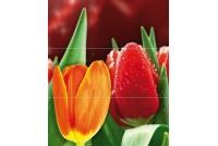 Royal Syntia Tulip А Панно