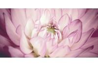 Sorenta mocca durst kwiaty В Декор
