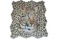 Leopard Dec 2