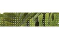 Tropicana Зеленый (TC1C021DT) Бордюр