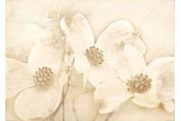 Tuti Декор Цветы TG2M011