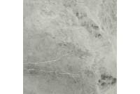 Charme Extra Silver Натуральная 60х60