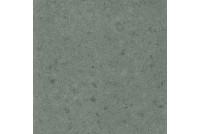 Genesis Saturn Grey Натуральная 60х60