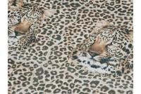 Leopard Oset