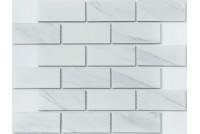 PR4595-45 NS mosaic